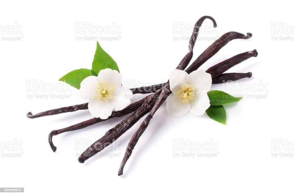 Bâtons de vanille avec fleur et feuille isolé sur fond blanc - Photo