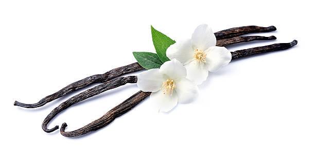 bâtons de vanille avec des fleurs - vanille photos et images de collection