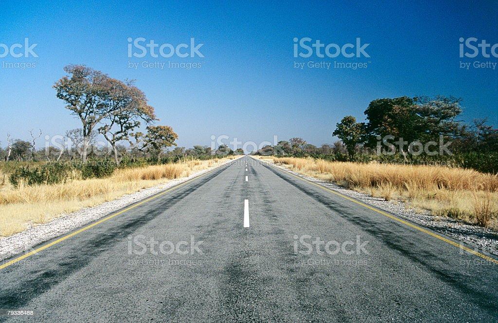 Ponto de Fuga em uma estrada vazia foto de stock royalty-free
