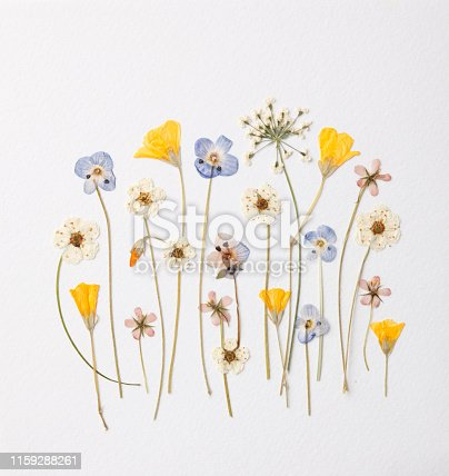 Artistic arrangement of little garden flowers