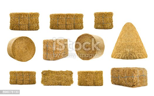 istock variety by hays 896078130