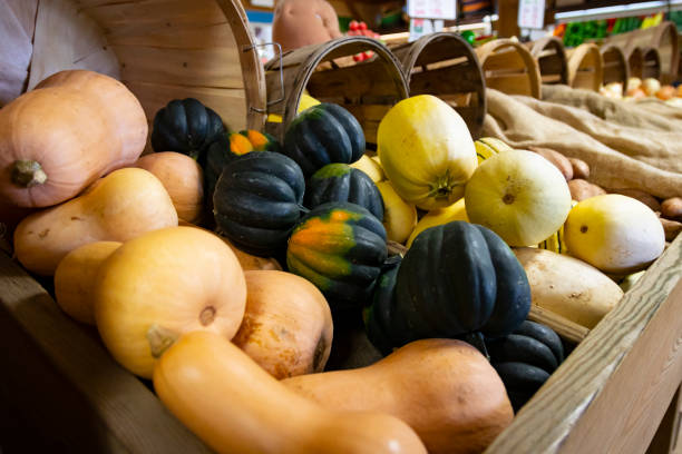 Variety of autumnal gourds stock photo