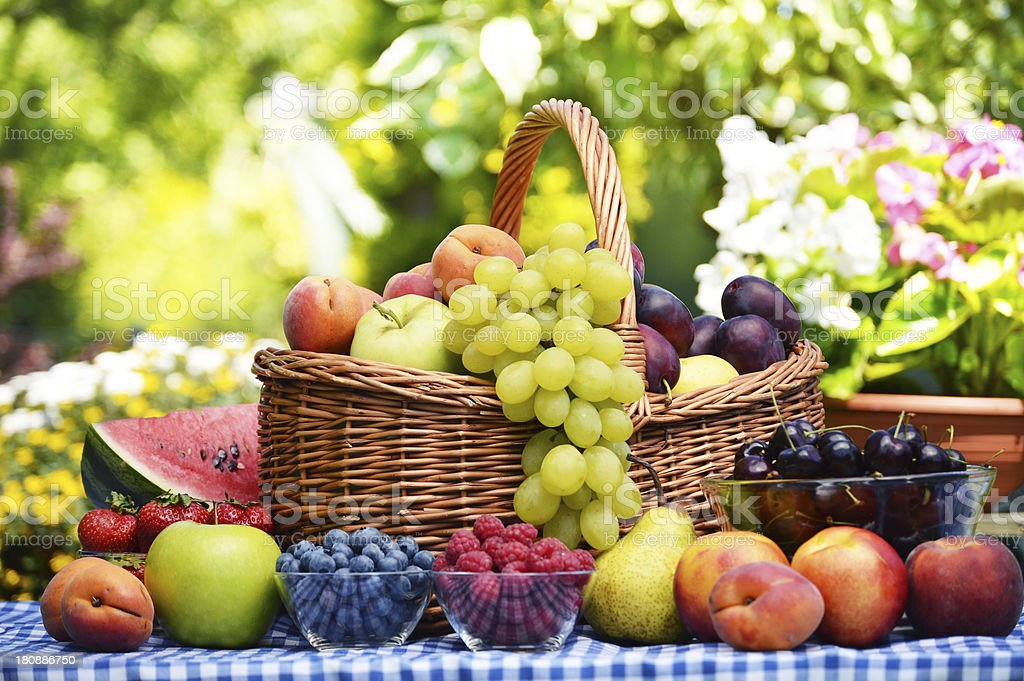 Variety of fresh fruits in the garden royalty-free stock photo
