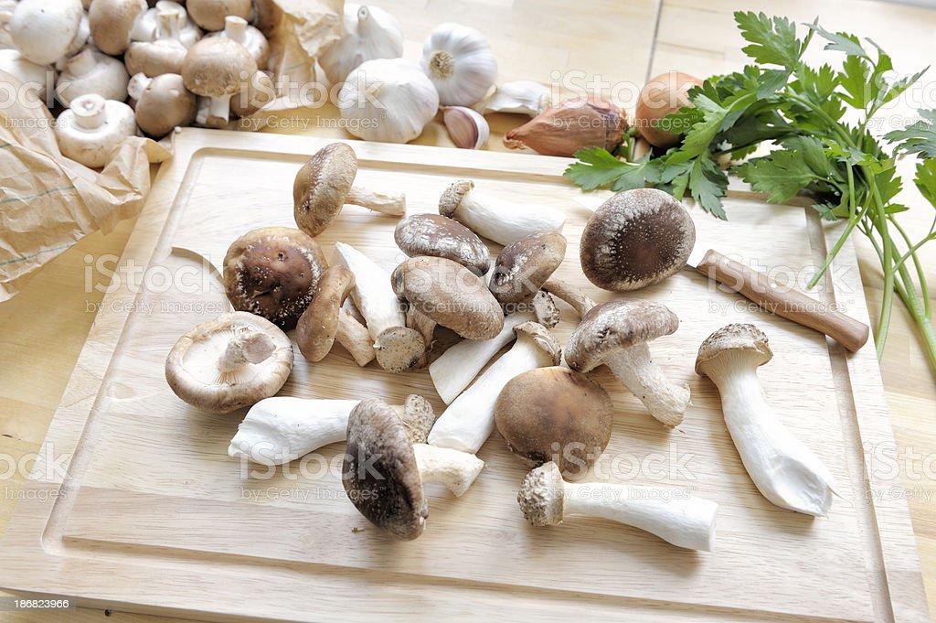Variety of Fresh Mushrooms stock photo