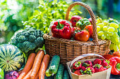 istock Variety of fresh organic vegetables and fruits in the garden 1280856062