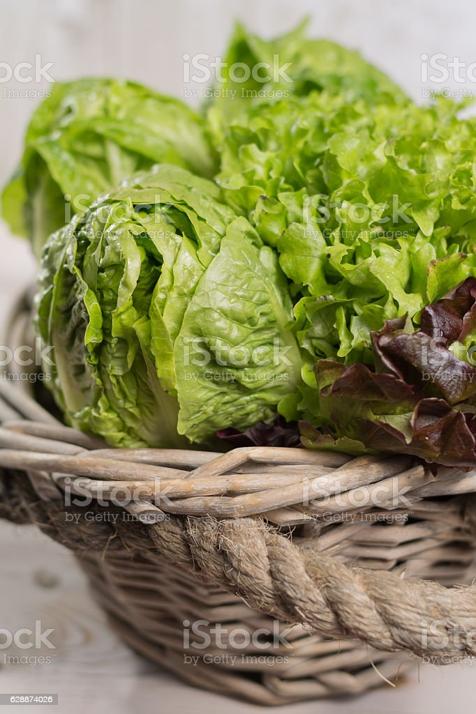 Variety of green and red lettuce salad leaves, red paprika stock photo