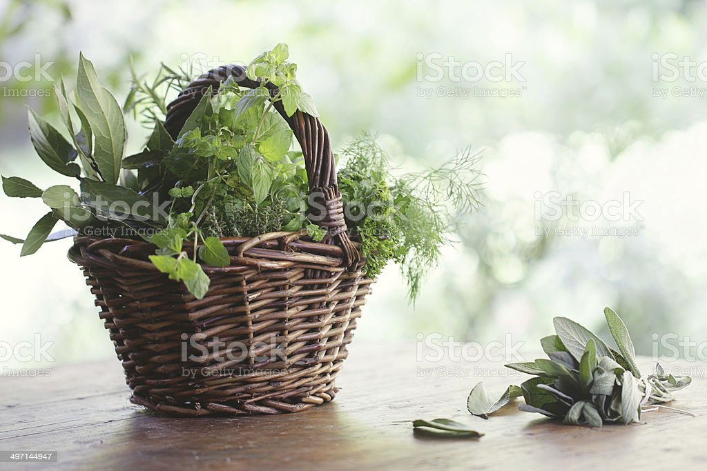Variety of herbs in wicker basket on table at garden stock photo