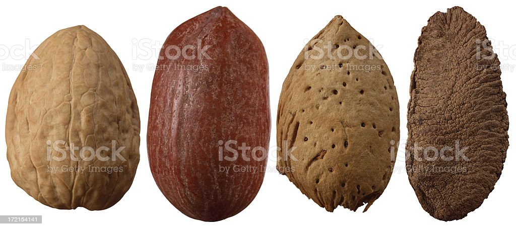 Variety of Nuts Isolated on White royalty-free stock photo
