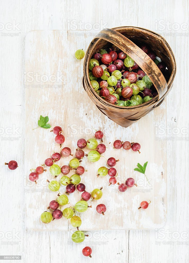 Variety of ripe garden gooseberries in birchbark basket stock photo