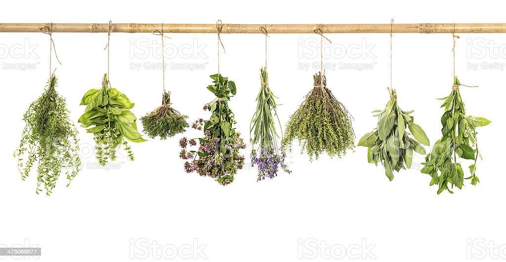 varios fresh herbs isolated on white royalty-free stock photo