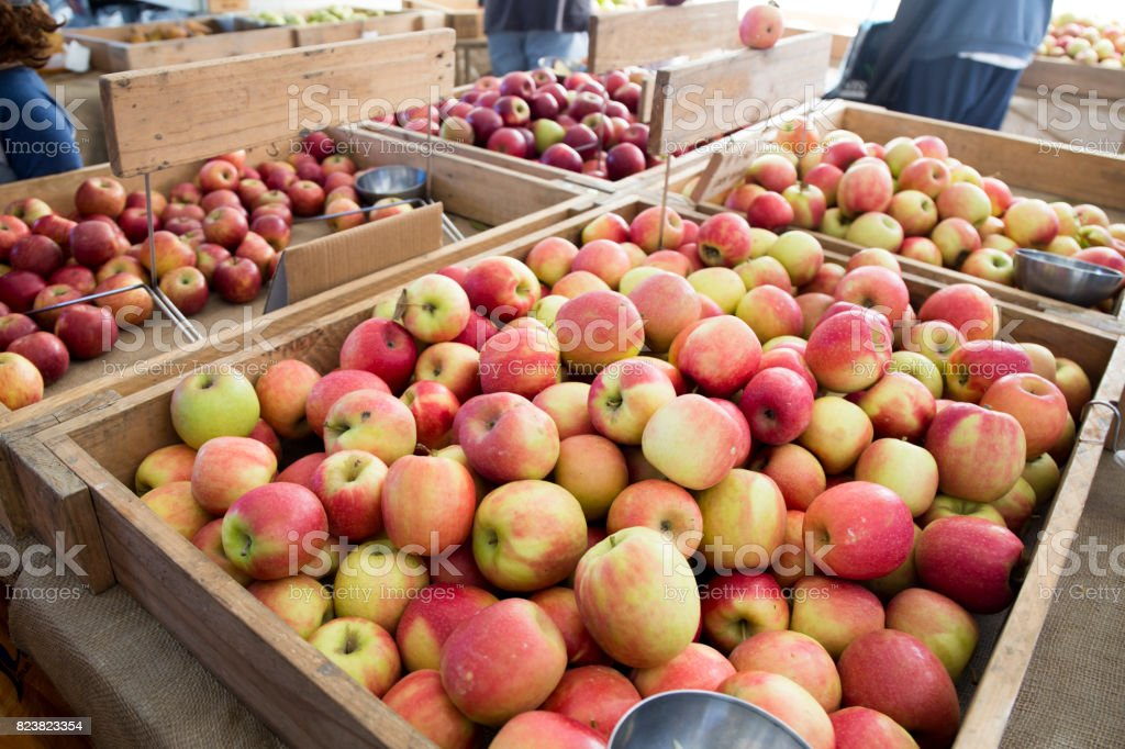 Various apples om the stall stock photo