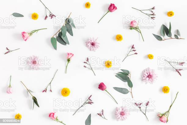 Various colorful flowers on white background flat lay top view picture id926985624?b=1&k=6&m=926985624&s=612x612&h=hapfo8ickkvmebhxolpegzvakk2uzxc9na0x08fujoc=