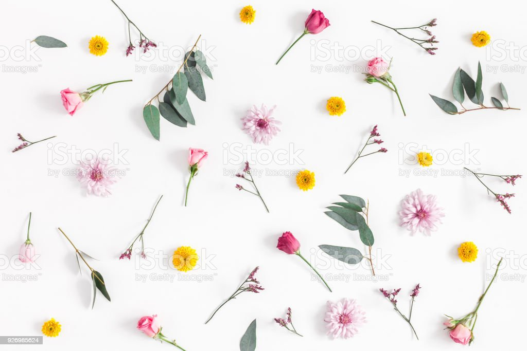 Various colorful flowers on white background. Flat lay, top view stock photo