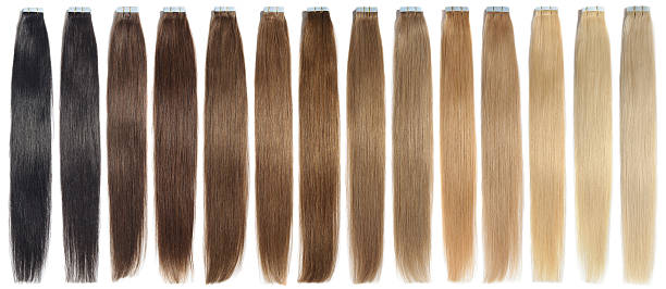 various colors of straight adhesive tape in human hair extensions - 붙임 머리 뉴스 사진 이미지