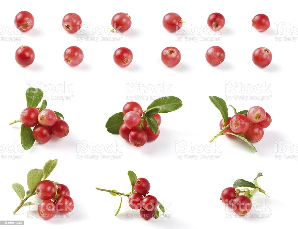 Various Cranberries stock photo