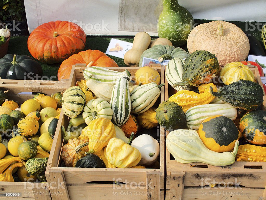 various decorative vegetables royalty-free stock photo