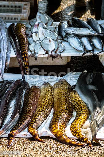 istock Various Fish in the Market 500261026