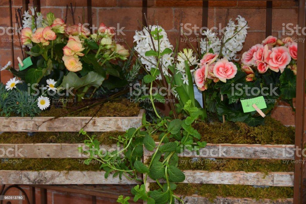Várias flores dentro do caixote de madeira como um canteiro de flores - decoração na parede de tijolo - foto de acervo