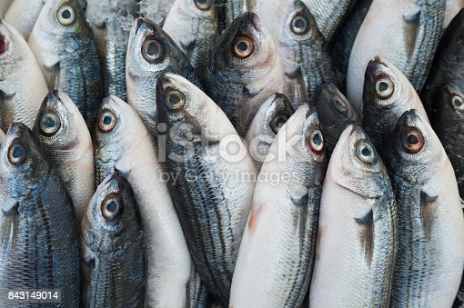 istock Various fresh fish and seafood at the fish market 843149014