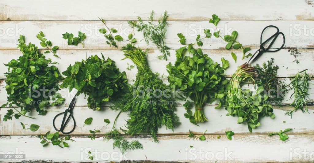 Various fresh green kitchen herbs stock photo