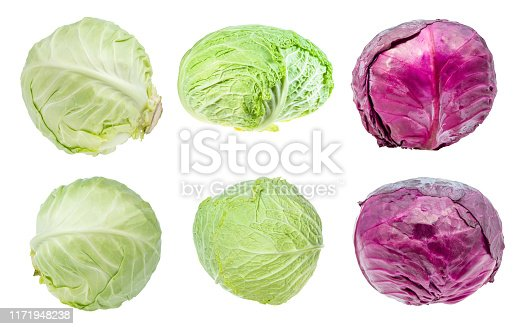 various fresh head cabbages cut out on white background