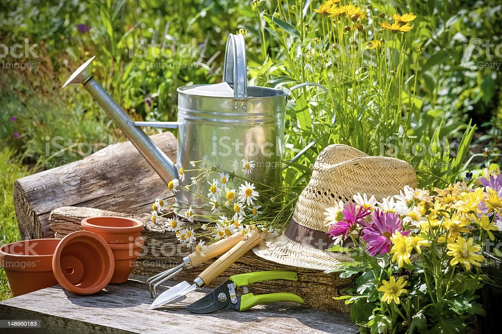 Various Gardening Implements In A Garden In The Sunshine Stock