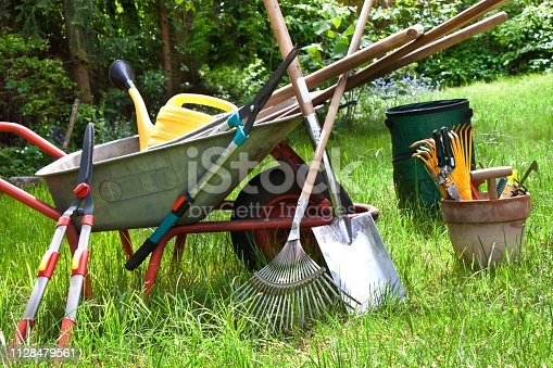 Various gardening tools in the garden background