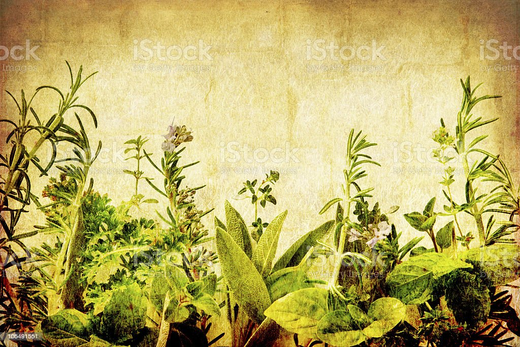 Various herbs against a grunge background royalty-free stock photo