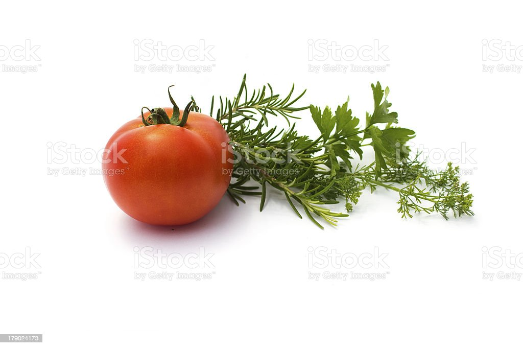 various herbs and tomato isolated on white stock photo