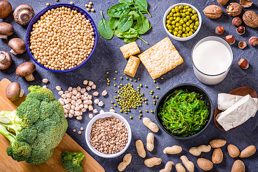 Top view of various kinds of vegan protein sources like tofu, tempeh, soy beans, soy milk, mushrooms, wakame, lentils, peanuts, spinach and chick peas. All the objects are on a gray bluish backdrop. Studio shot taken with Canon EOS 6D Mark II and Canon EF 24-105 mm f/4L