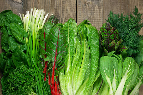 various leafy vegetables - green color stock pictures, royalty-free photos & images
