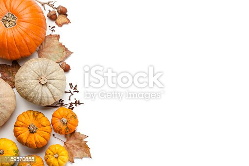 High view of several multi colored decorative gourds and fallen leaves arranged in a heap at the left border making a frame and leaving useful copy space for text and/or logo on white background. Predominant colors are orange, yellow and green. High key DSRL studio photo taken with Canon EOS 5D Mk II and Canon EF 100mm f/2.8L Macro IS USM.