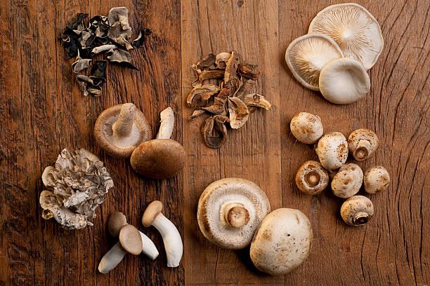 식용 버섯 - 식용 버섯 뉴스 사진 이미지