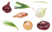 various onion vegetables isolated on white background