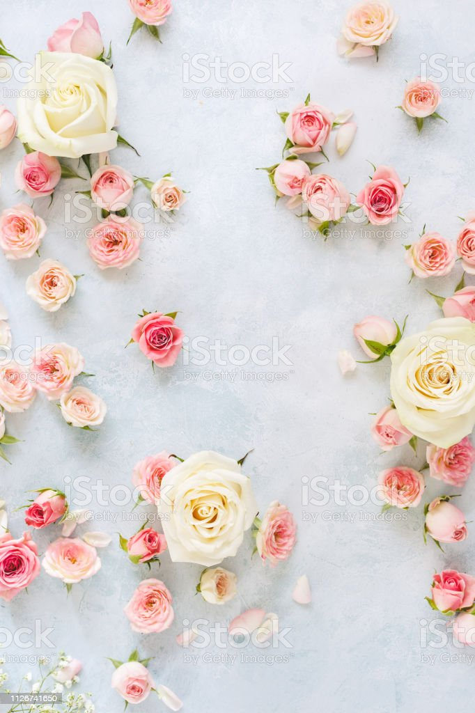 Various Roses Petals And Buds On Light Blue Textured