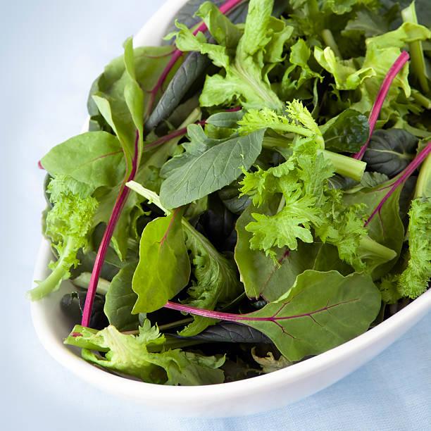 salat blätter - ägäische inseln stock-fotos und bilder