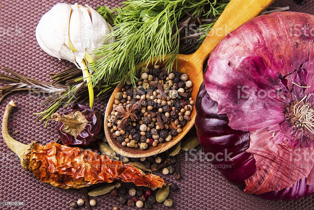 Various spices and herbs, onion and garlik royalty-free stock photo