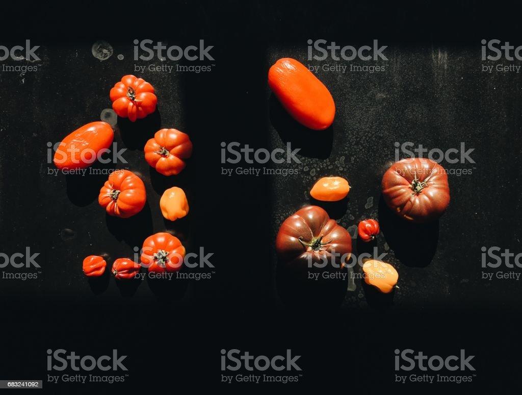 다양한 토마토 royalty-free 스톡 사진