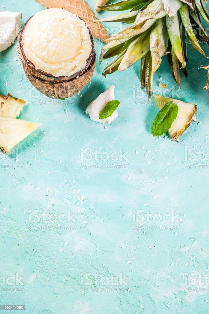 다양 한 열 대 아이스크림 셔 벗 - 로열티 프리 개념 스톡 사진