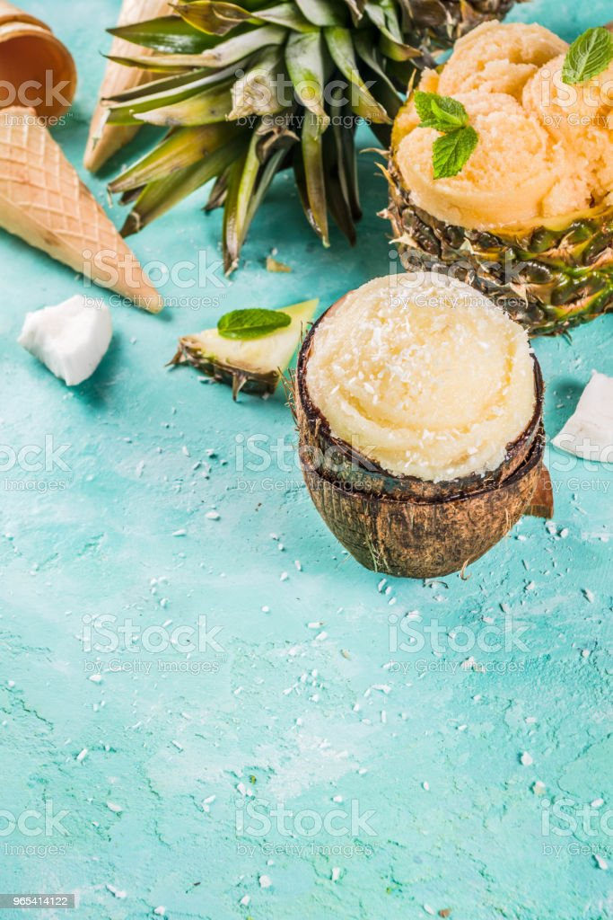 Various tropical ice cream sorbet zbiór zdjęć royalty-free