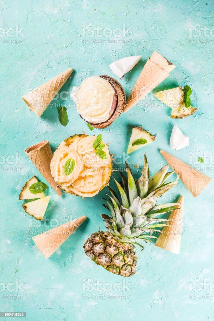 Various tropical ice cream sorbet zbiór zdjęć royalty-free