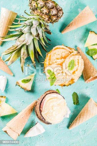 Various Tropical Ice Cream Sorbet - Stockowe zdjęcia i więcej obrazów Ananas