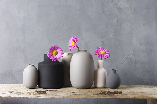 Various vases with flowers on wooden shelf