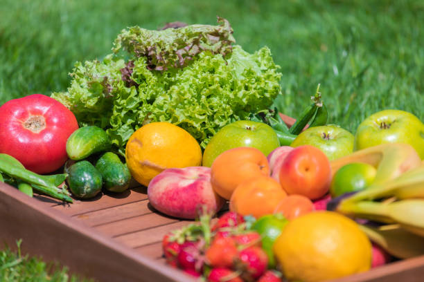 Various vegetables and fruits stock photo