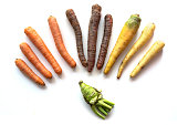 Various vegetables, red, black and white carrots in a semicircle and a funny grown kohlrabi isolated on a white background, top view from above