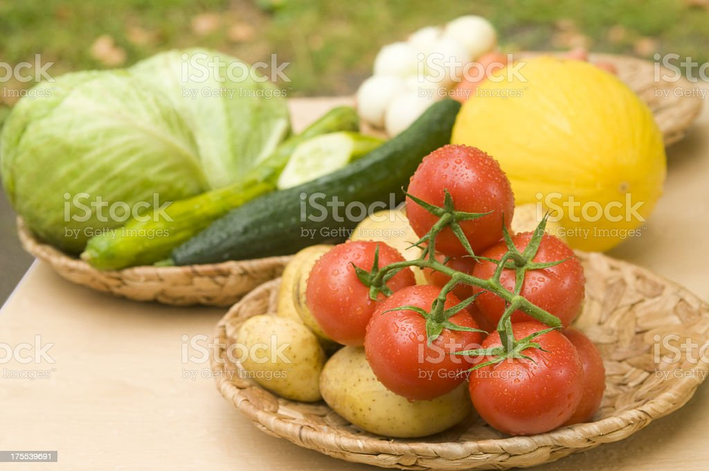 Various vegetables: tomatoes, cabbage, cucumbers, potatoes, cantaloupe royalty-free stock photo
