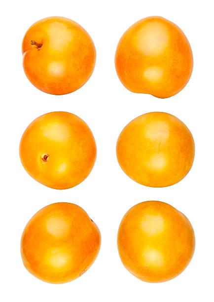 des prunes jaune - mirabelle photos et images de collection