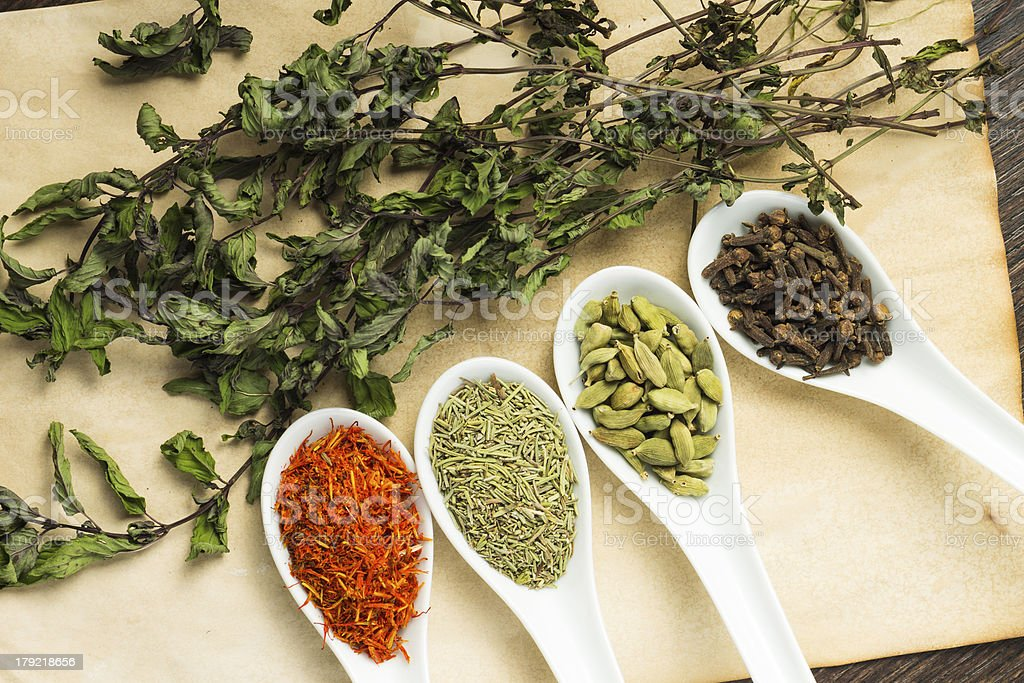 Variuos of Spices with branch dried Mint royalty-free stock photo