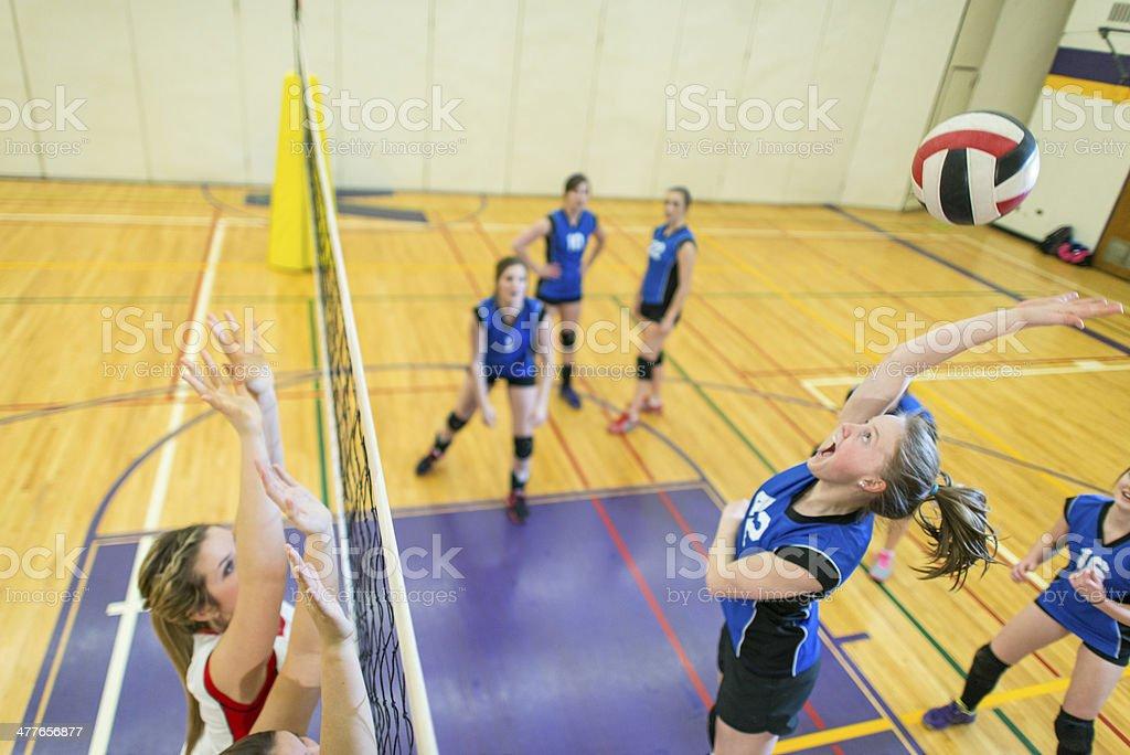 Varsity Volleyball royalty-free stock photo