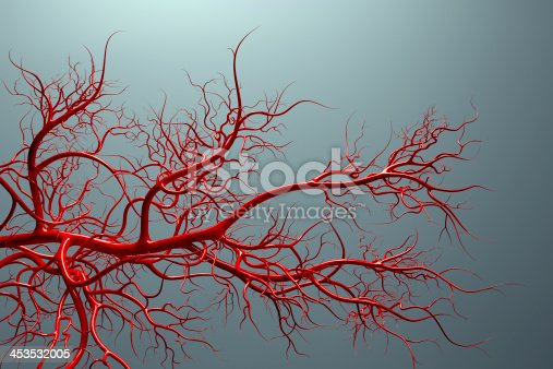 royalty free stock image, an artistic medical illustration of the vascular system - high quality 3D render of veins full of blood
